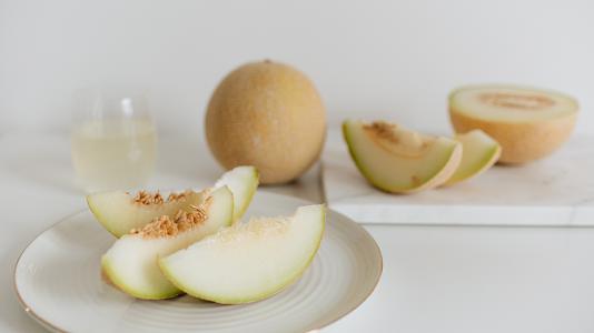 Hidroponik Melon Anti Gagal untuk Pemula_Thumbnail.png